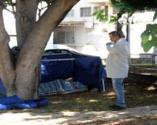 Vatandaşlar ihbar etti! Parktaki ağaç altında ölü bulundu
