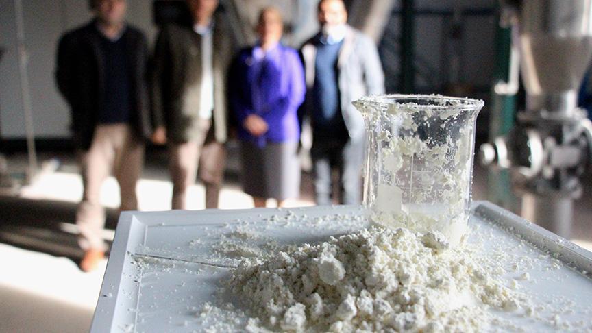 Türkiye'nin ilk 'yerli ağız sütü tozu' üretildi