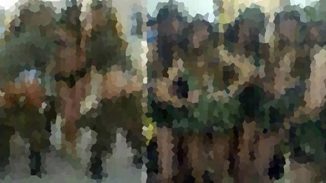 военную девку выебали резины пируэтов