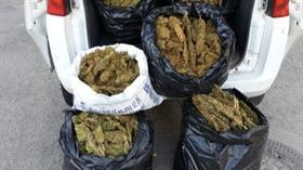 Bodrumdaki soba ve valizden 11 kilo 282 gram esrar çıktı