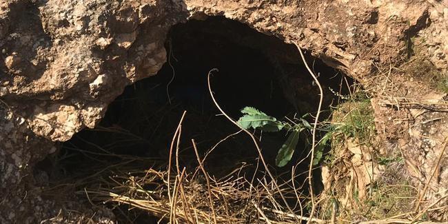Şanlıurfa'da 70 kilogram patlayıcı bulundu