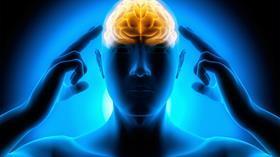 Beyin yaşam boyunca yeni hücreler üretebiliyor