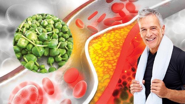 Kolesterolün doğal devası kapari