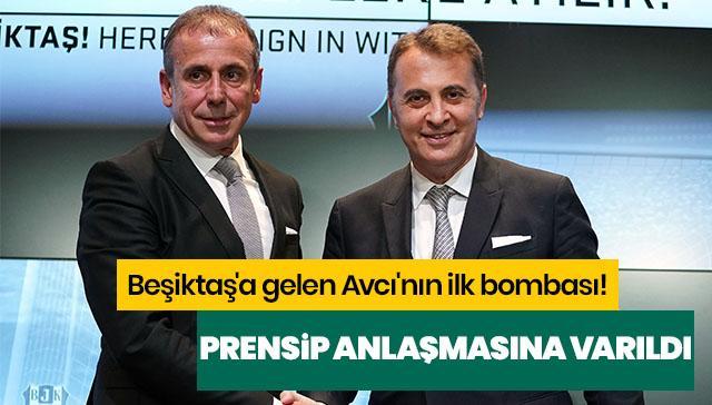 Beşiktaş'a gelen Avcı'nın ilk bombası! Prensip anlaşmasına varıldı