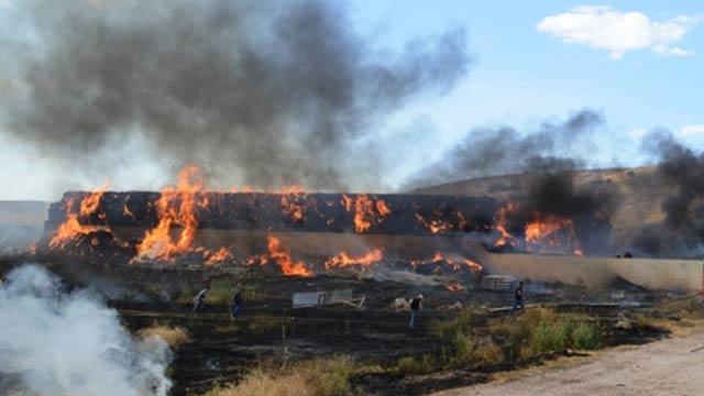 Mardin Kızıltepe'de fıstık ağaçları ve saman balyaları yandı