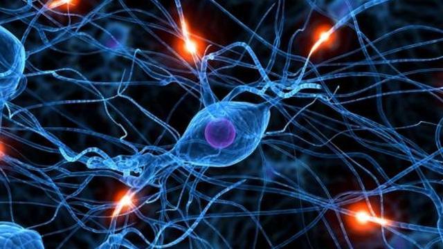 Bilim insanlarından 'beyin' ile ilgili ilginç keşif: İlk defa fark edildi