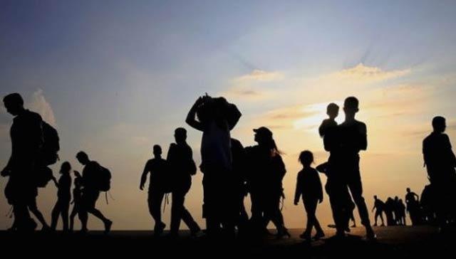 Bitlis merkezli 5 ilde göçmen kaçakçılığı operasyonu