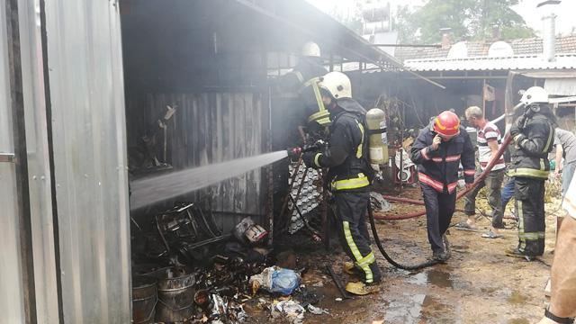 Bursa'da yanan ahırda 8 koyun telef oldu, 4 kişi zehirlendi