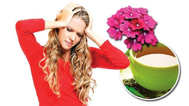 Uykusuzluk ve migrene mine çiçeği