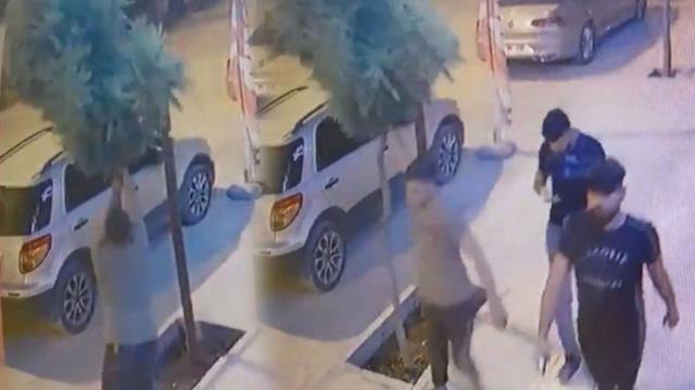 Mardin'de kaldırımdaki ağacı kıran adamla gözaltına alındı