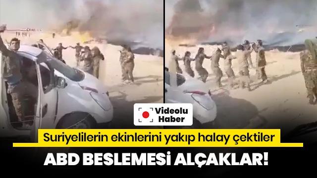 Tarım arazileri yanarken YPG/PKK'lı teröristler halay çekti