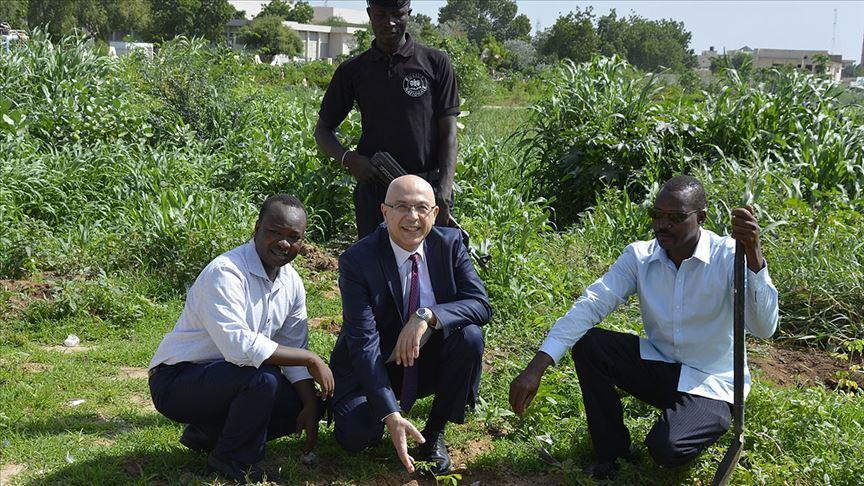 Çad'da 15 Temmuz şehitleri anısına ağaçlandırma projesi
