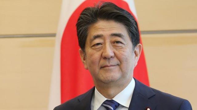 Japonya'da Senato seçimlerini Abe Şinzo kazandı