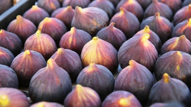 Siyah incir ihracatı 29 Temmuz'da başlıyor