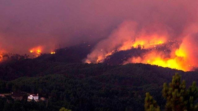Portekiz'deki orman yangınında yaralı sayısı 31'e yükseldi