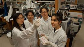 Kanser tedavisinde büyük keşif! Bilim insanları kan-beyin bariyerini kıran ilaç dağıtım sistemi geliştirdi