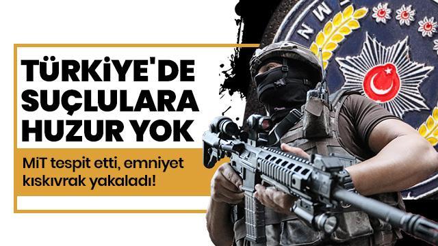 FETÖ/PDY adına üst düzey çalışmalarda bulunan terörist yakaladı