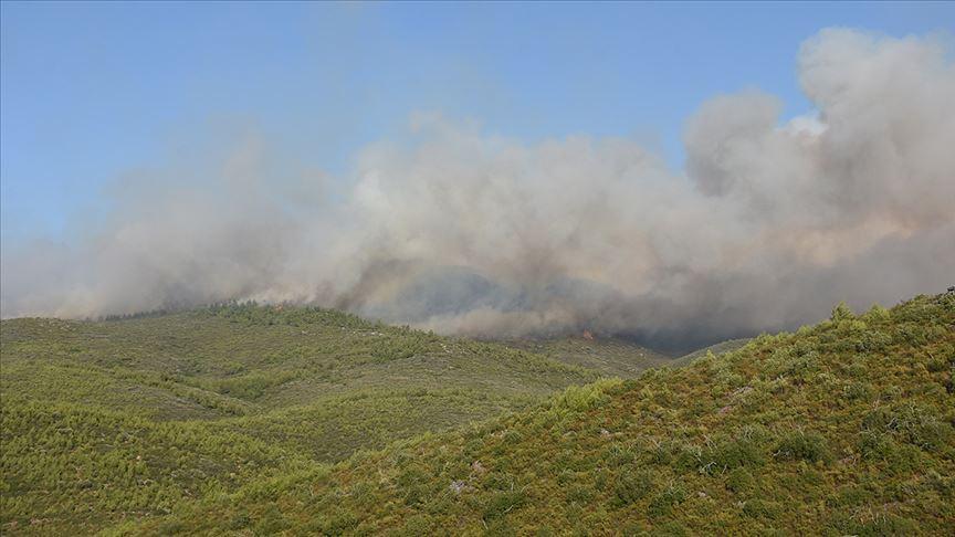 Muğla'daki orman yangınları kısmen kontrol altına alındı