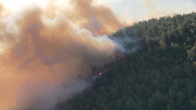 Orman Genel Müdür Yardımcısı Çelik'ten Muğla'daki orman yangınlarına ilişkin açıklama