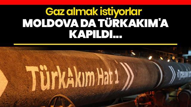 TürkAkım'dan gaz almak istiyorlar