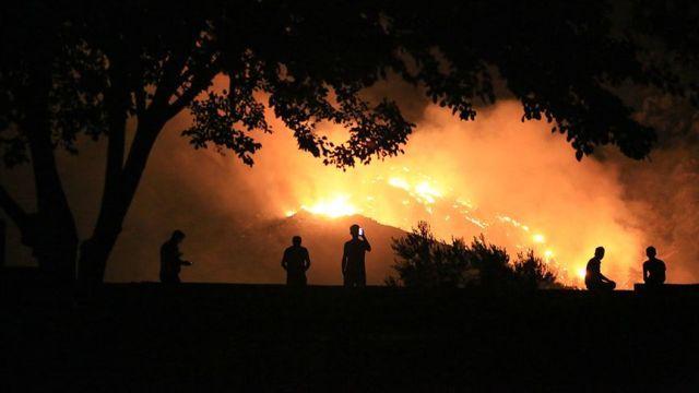 Milas'taki orman yangınını söndürme çalışmaları devam ediyor