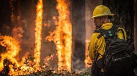Amazon ormanlarında yılbaşından bu yana 72 binden fazla yangın çıktı