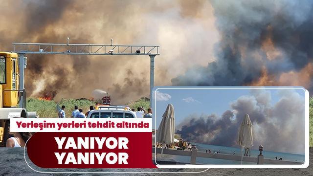 Edremit sahilinde yangın çıktı