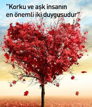 """""""Korku ve aşk insanın en önemli iki duygusudur"""""""