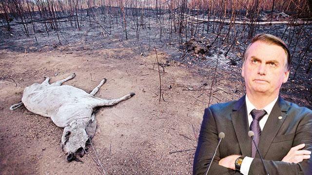 Yangınlarüç ülkeye sıçradı