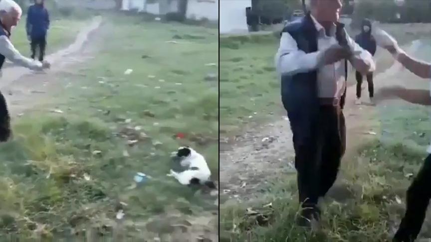 Vicdansız adam hem köpeği hem çocuğu taşladı