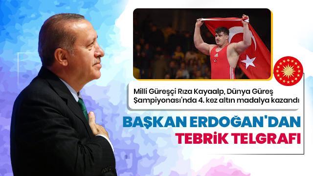 Başkan Erdoğan'dan Kayaalp'e kutlama telgrafı