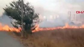 İstanbul'da Nükleer Araştırma Merkezi'nin de içerisinde bulunduğu alanda yangın!