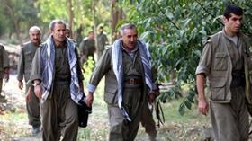 Diyarbakır'da terör operasyonunda 6 milyon 718 bin kök hint keneviri ele geçirildi