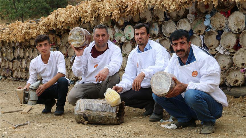 Herekol Dağı'nda 'huzurlu' bal üretimi