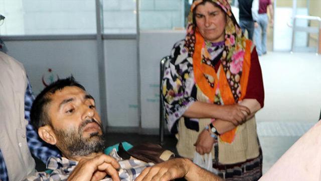 Erzurum'da ayı saldırısı: Pençeyi yiyen öldü, 2 kişi yaralandı