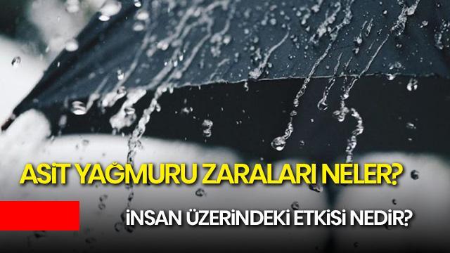 Asit yağmuru nedir, zararları nelerdir? İstanbul'daki yağmur zararlı mı?
