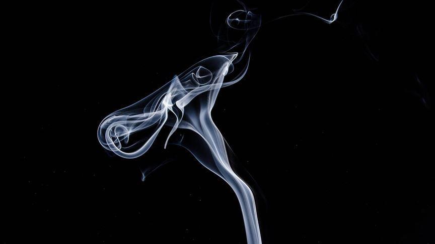 Ordu Üniversitesi Eğitim ve Araştırma Hastanesi Başhekimi Doç. Dr. Timur: Prematüre doğumların en önemli faktörü sigaradır