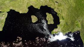 Tortum'un 'yüzen adalar'ı turizme kazandırılacak