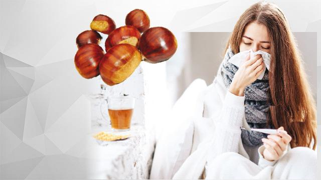 Kestane ye grip olma