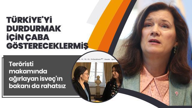Teröristi makamında ağırlayan İsveç Dışişleri Bakanı'ndan skandal Türkiye açıklaması