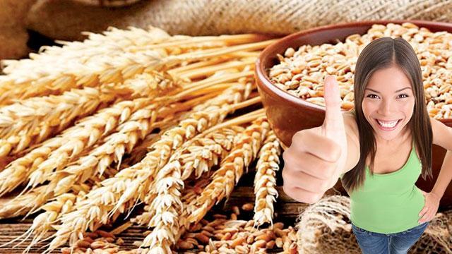 Şifa deposu buğday deposu