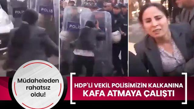 HDP'li vekil Ayşe Sürücü polisimizin kalkanına kafa atmaya çalıştı