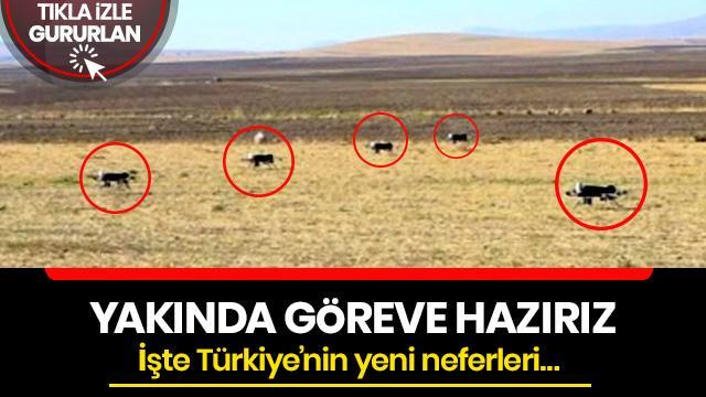İşte Türkiye'nin yapay zekalı İHA'ları