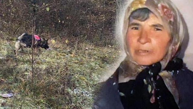 Kastamonu'da 70 gündür kayıp olarak aranan alzheimer hastası kadının kemikleri bulundu