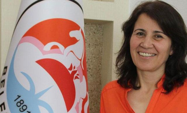 Kandil'in siyasi kanadı HDP'li Hatice Çevik tutuklandı