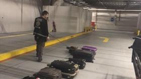 İstanbul Havalimanı'nda bavullara gizlenmiş 4,6 kilogram kokain ele geçirildi