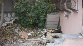 İstanbul Avcılar'da sokak ortasında evsiz adamın cesedi bulundu
