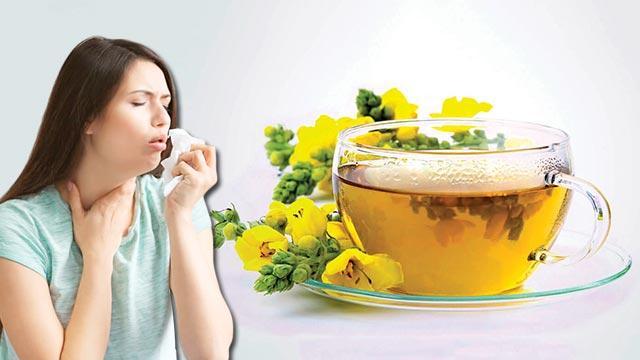 Astım şikayetlerini azaltan çay
