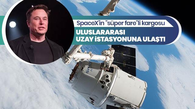 """""""Süper fare""""li kargo Uluslararası Uzay İstasyonuna ulaştı"""