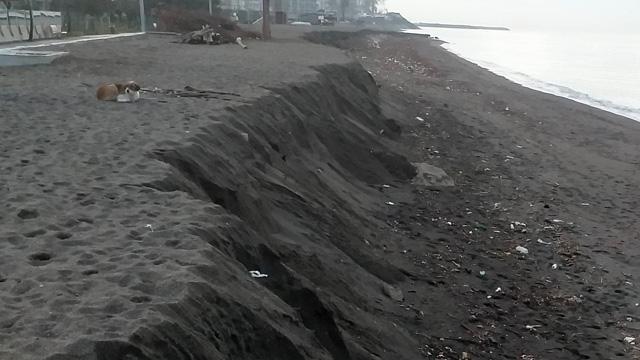 Akçakoca'da korkutan görüntü! Kumsal 3 metre aşağıya indi